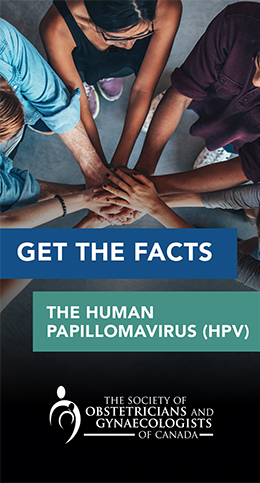 Brochure cover for facts about Human Papillomavirus (HPV)